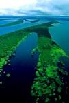 Риу-Негру, черная река