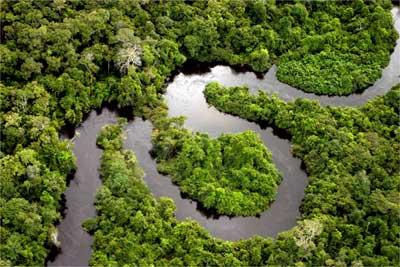 Амазонка – самая длинная река на Земле Фото 5