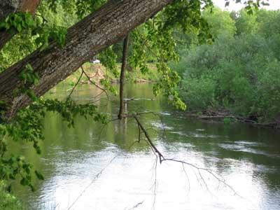 Самая чистая река мира Вонча фото 2