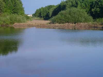 Самая чистая река мира Вонча фото 3