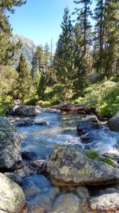 Горный ручей в Пиренеях, Испания
