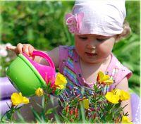 Как поливать цветы правильно